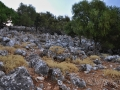 Takto dopadla Akropola Sami po zemetraseeniach, Kefalónia